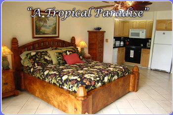 Our Maui Papakea condo rental provides privacy with easy access to the beach and other property amenities. Rent this Maui condo vacation rental by owner.